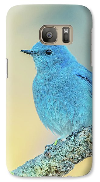 Galaxy Case featuring the photograph Mountain Bluebird by Angie Vogel