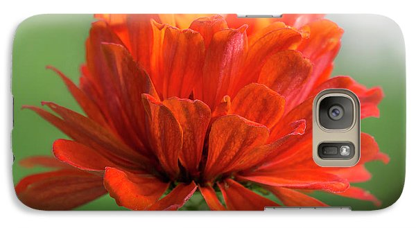 Galaxy Case featuring the photograph Red Zinnia  by Jim Hughes