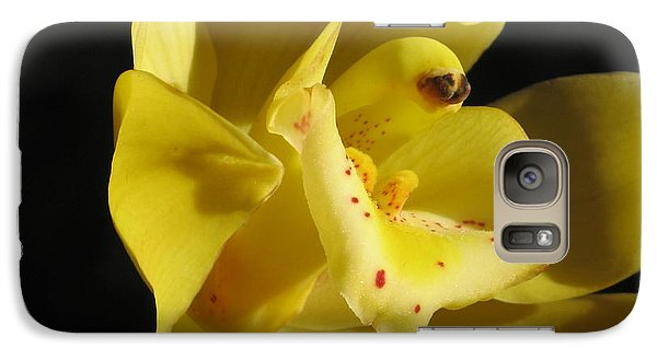 Galaxy Case featuring the photograph Orchid Macro by Alfred Ng