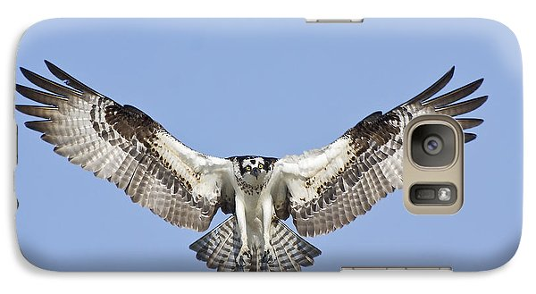 Galaxy Case featuring the photograph Osprey In Flight by Bob Decker