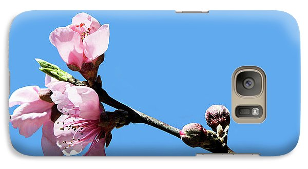 Galaxy Case featuring the photograph Plum Blossoms by Kristin Elmquist