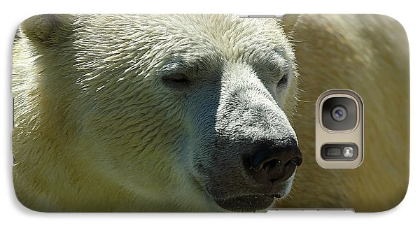 Galaxy Case featuring the photograph Polar Bear by JT Lewis