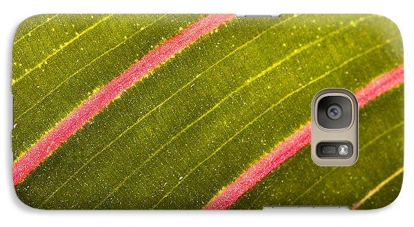 Galaxy Case featuring the photograph Prayer Plant Maranta Leuconeura by Gabor Pozsgai