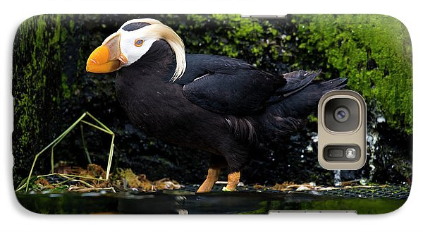 Puffin Galaxy S7 Case - Puffin Reflected by Mike Dawson