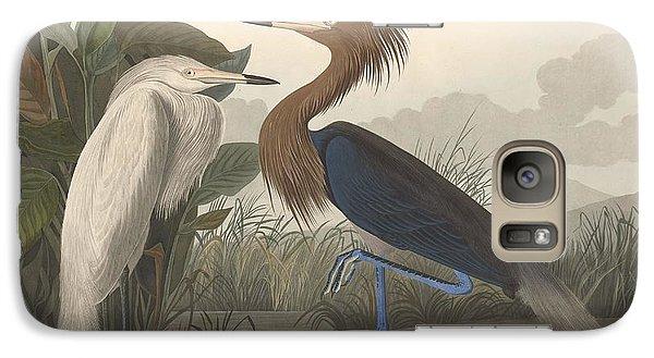 Ibis Galaxy S7 Case - Purple Heron by Dreyer Wildlife Print Collections