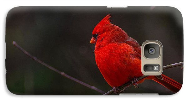 Galaxy Case featuring the photograph Quality Quiet Time  by John Harding