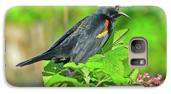 Red-winged Blackbird Galaxy S7 Case