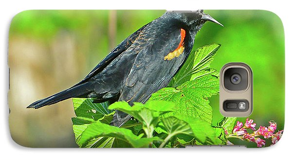 Galaxy Case featuring the photograph Red-winged Blackbird by Jack Moskovita