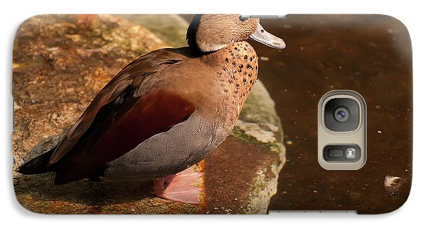 Galaxy Case featuring the photograph Ringed Teal On A Rock by Chris Flees