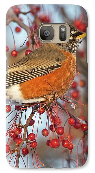 Galaxy Case featuring the photograph Robin.. by Nina Stavlund
