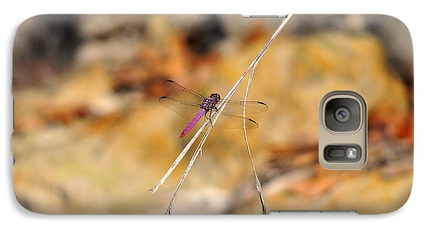 Galaxy Case featuring the photograph Fuchsia Fly by Al Powell Photography USA