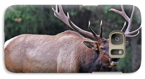 Galaxy Case featuring the photograph  Royal Roosevelt Bull Elk by Jack Moskovita