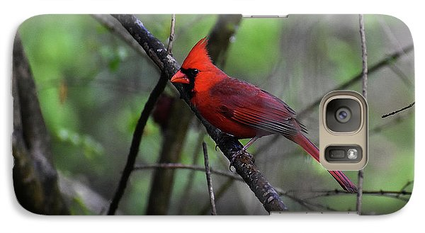 Galaxy Case featuring the photograph Saint Louis by Skip Willits