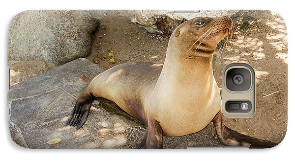 Galaxy Case featuring the photograph Sea Lion On The Beach, Galapagos Islands by Marek Poplawski