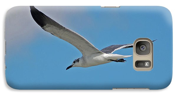 Galaxy Case featuring the photograph 1- Seagull by Joseph Keane