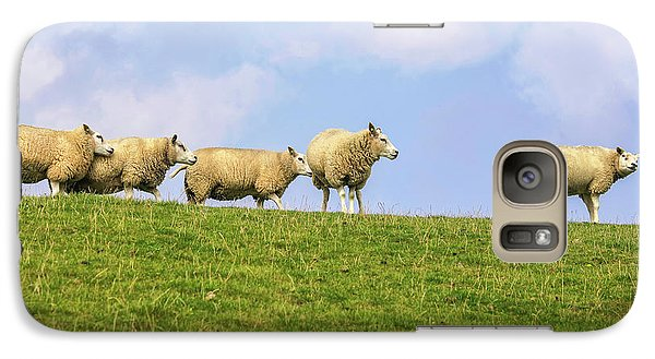 Galaxy Case featuring the photograph Sheep On Dyke by Patricia Hofmeester