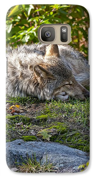 Galaxy Case featuring the photograph Sleeping Timber Wolf by Michael Cummings