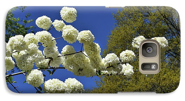 Galaxy Case featuring the photograph Snowballs by Skip Willits