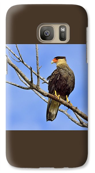 Galaxy Case featuring the photograph Southern Comfort by Tony Beck