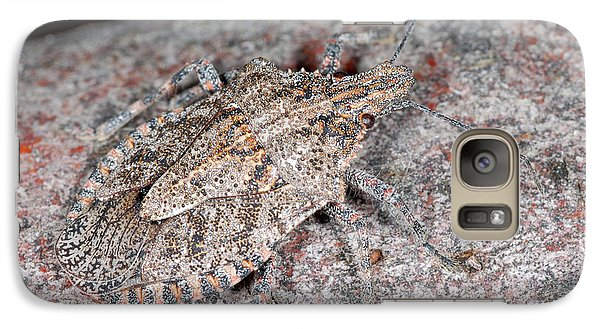 Galaxy Case featuring the photograph Stink Bug by Breck Bartholomew