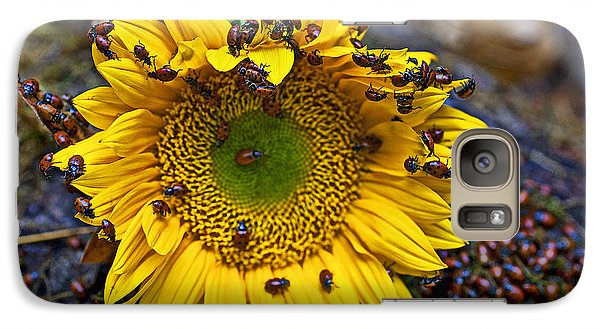 Sunflower Covered In Ladybugs Galaxy S7 Case