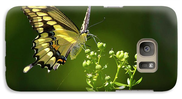 Galaxy Case featuring the photograph Elegant Swallowtail Butterfly by Christina Rollo