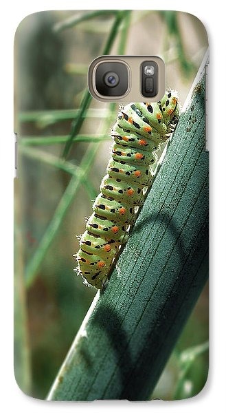 Galaxy Case featuring the photograph Swallowtail Caterpillar by Meir Ezrachi