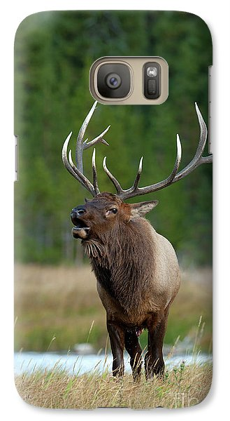 Galaxy Case featuring the photograph The Challenger by Sandra Bronstein