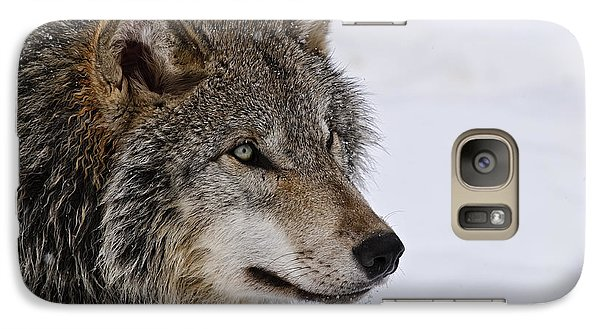 Galaxy Case featuring the photograph Timber Wolf by Michael Cummings