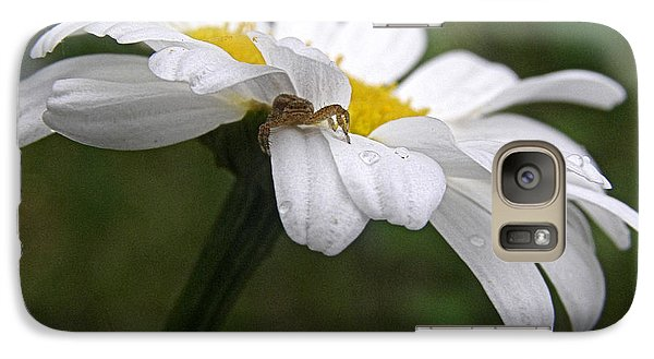 Galaxy Case featuring the photograph Umbrella For A Spider by Angie Rea