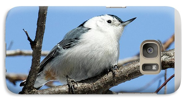 White-breasted Nuthatch Galaxy S7 Case by Ricky L Jones
