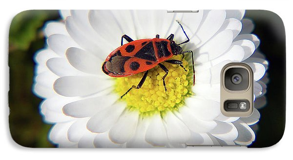 Galaxy Case featuring the photograph White Flower by Elvira Ladocki