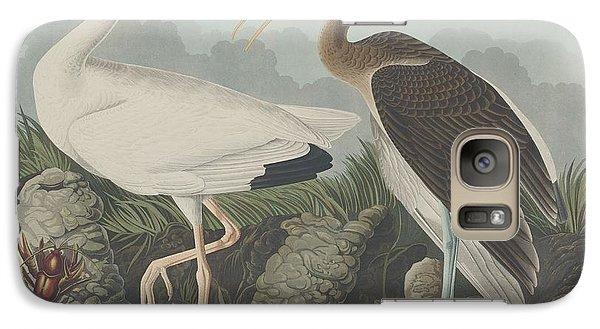 Ibis Galaxy S7 Case - White Ibis by Dreyer Wildlife Print Collections