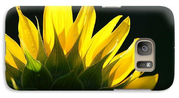 Galaxy Case featuring the photograph Wild Sunflower by Shari Jardina