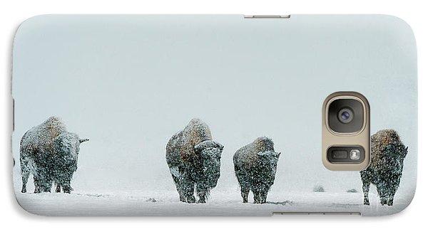 Galaxy Case featuring the photograph Winter's Burden II by Sandra Bronstein