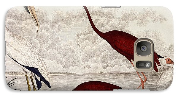 Wood Ibis, Scarlet Flamingo, White Ibis Galaxy S7 Case by Alexander Wilson