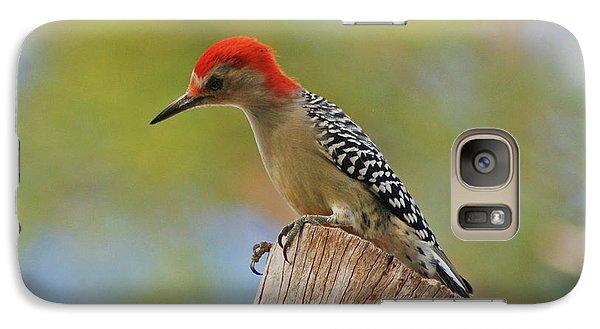 Galaxy Case featuring the digital art 1- Woodpecker by Joseph Keane