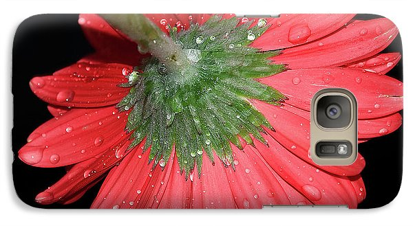 Galaxy Case featuring the photograph Red Gerber by Elvira Ladocki