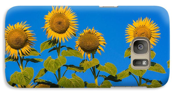 Sunflower Galaxy S7 Case - Field Of Sunflowers by Bernard Jaubert