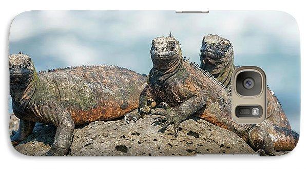 Galaxy Case featuring the photograph Marine Iguana On Galapagos Islands by Marek Poplawski