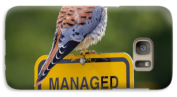 American Kestrel Galaxy S7 Case by Ricky L Jones