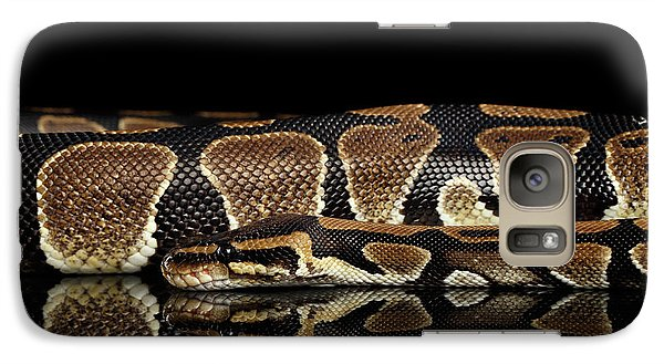 Ball Or Royal Python Snake On Isolated Black Background Galaxy S7 Case by Sergey Taran