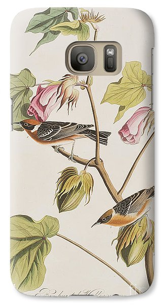 Bay Breasted Warbler Galaxy S7 Case by John James Audubon