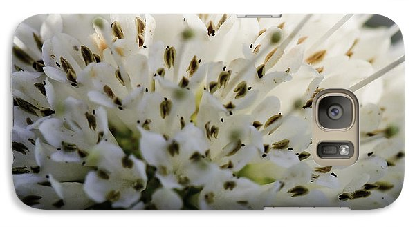 Galaxy Case featuring the photograph Buttom Bush by Perla Copernik