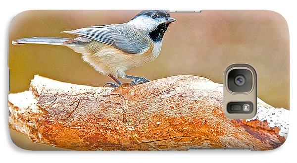 Galaxy Case featuring the photograph Carolina Chickadee On Tree Limb by A Gurmankin