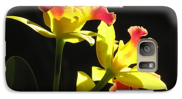 Galaxy Case featuring the photograph Cattleya Orchid by Alfred Ng