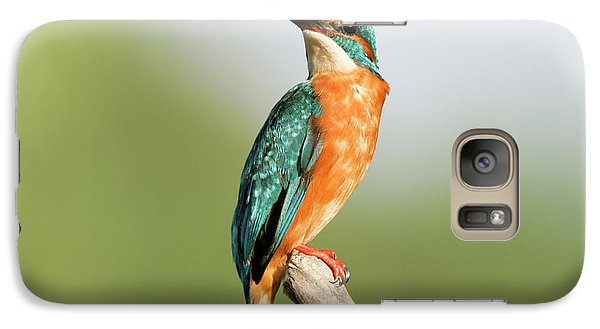 Common Kingfisher Alcedo Atthis Galaxy S7 Case
