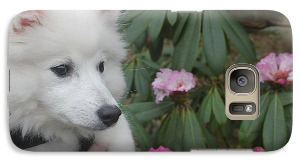 Galaxy Case featuring the photograph Daisy by David Grant