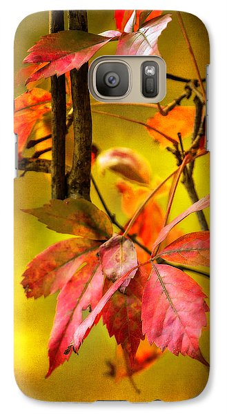 Galaxy Case featuring the photograph Fall Colors by Eduard Moldoveanu