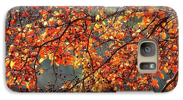 Galaxy Case featuring the photograph Fall Leaves by Nicholas Burningham
